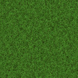 Green grass stock illustration