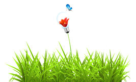 Green grass. Electric Materials  Light Bulb Lamp on green Royalty Free Stock Images