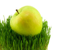Green grass. Green apple on grass isolated on white Royalty Free Stock Photo