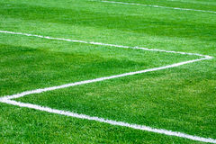 Green grass. On a football stadium Stock Photo