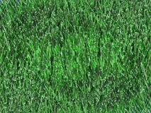 Green grass 7 Stock Photography