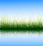 Green Grass. And blue sky with reflection in water. Additional vector format in EPS (v.8 Stock Images