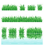 Green grass. Fresh green grass rows design elements, isolated on white background and with water reflection. Only linear gradients and flat colors used Stock Images