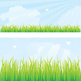 Green grass. And blue sky, vector illustration Stock Photos