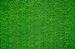 Green grass from above Stock Images