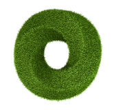 Green grass abstract shape donut Royalty Free Stock Image