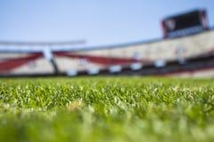Green Grass Across Beige Red Open Sports Stadium during Daytime Stock Photos