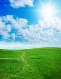 Green grass against a blue sunny sky Royalty Free Stock Photos