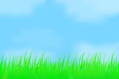 Green grass against the misty sky. Royalty Free Stock Photography