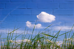 Green grass against the sky and wall. Green grass against the sky with the texture of brick wall Stock Photography