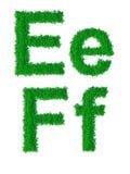 Green grass alphabet Stock Image