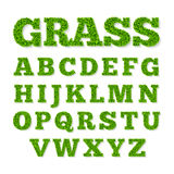 Green grass alphabet Stock Image