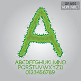 Green Grass Alphabet and Numbers Vector. Set of Green Grass Alphabet and Numbers Vector Royalty Free Stock Photos