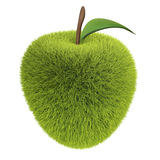 Green grass apple Stock Image
