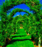 Green Grass Arches. Deep green grass covered arches Royalty Free Stock Image