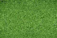 Free Green Grass Background Stock Photography - 10897702