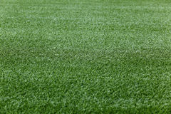 Free Green Grass Background Stock Photography - 14765242