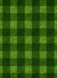 Green grass background Stock Images