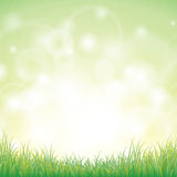 Green grass with background Stock Photography