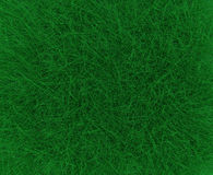 Green grass for background Royalty Free Stock Photos