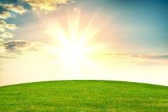 Green grass field. Green grass on background beautiful sunset orv sunrise Royalty Free Stock Image