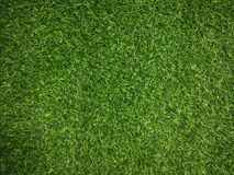 Green grass background big. Big ad simple green grass background Stock Photography