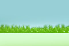 Green grass background with blue sky. Plastic green grass on artificial blue sky with blurry backgorund Royalty Free Stock Photos