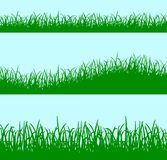 Green grass background concept Stock Photography