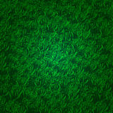 Green grass background with darkened edges Royalty Free Stock Images