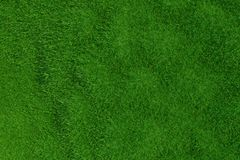 Green grass background. Natural background. Top view. 3d rendering. Royalty Free Stock Image