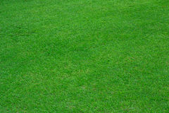 Green grass background of soccer field. In Bangkok Thailand Stock Photography