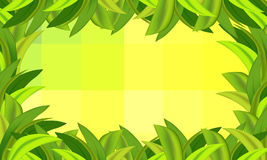 Green grass and background with squares. Vector illustration Royalty Free Stock Image