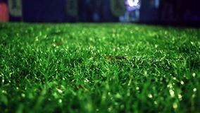 Green grass background. Stadium night. Green grass soccer field background. stock video footage