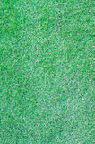 Green grass  background. Green grass texture for background Royalty Free Stock Image