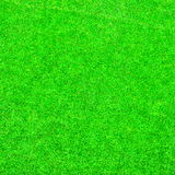 Green Grass Background Texture Royalty Free Stock Image