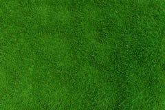 Green grass. background texture. Stock Photo