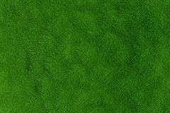 Green grass. background texture. Royalty Free Stock Photo