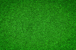 Green grass background texture Royalty Free Stock Images