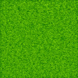 Green grass background vector Stock Photography