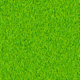 Green grass background vector Stock Image