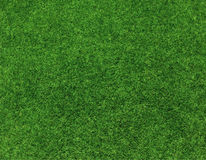 Green grass background vector Royalty Free Stock Photography