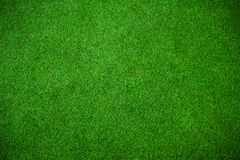 Green grass background vignette or the green nature wall texture Stock Photos