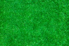 Green grass background vignette or the naturally walls texture I Stock Photo