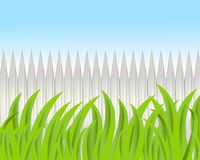 Green grass on a background a wooden fence Stock Image
