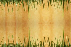 Green Grass Background with yellow space Stock Photography
