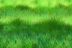 Green grass background. You can use this material to create images for post card or background or wallpaper and more lively digital creations vector illustration