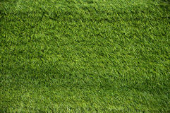Green grass backgrounds Royalty Free Stock Photography