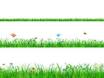 Green grass backgrounds borders with flowers, butterflies and bees. Green grass backgrounds borders with flowers, butterflies and bees Stock Photos