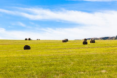 Grass Bales Blue Farm Landscape Stock Image