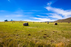 Green Grass Bales Mountains Stock Images